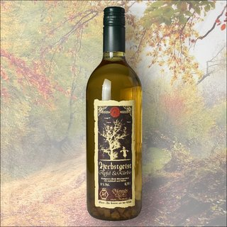 HERBSTGEIST -Apple & Pumpkin 0,75l 8%vol